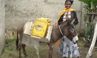 Jede Esel-Spende schenkt Zukunft in Äthiopien