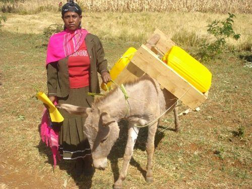 Esel spenden, Armut lindern, Zukunft schenken